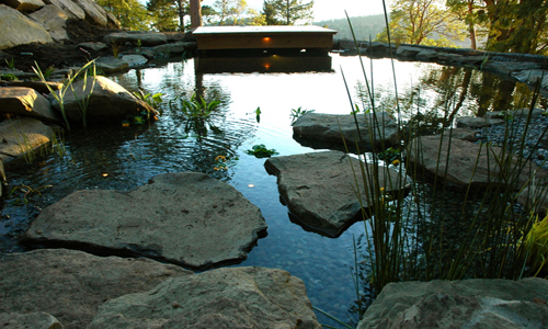 Recreational swim ponds wildwood waterscapes for Koi pond you can swim in